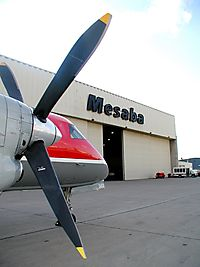 Фото Mesaba Airlines