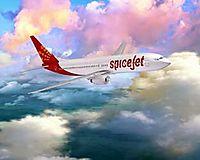 Фото Spicejet