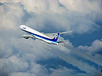 Фото All Nippon Airways
